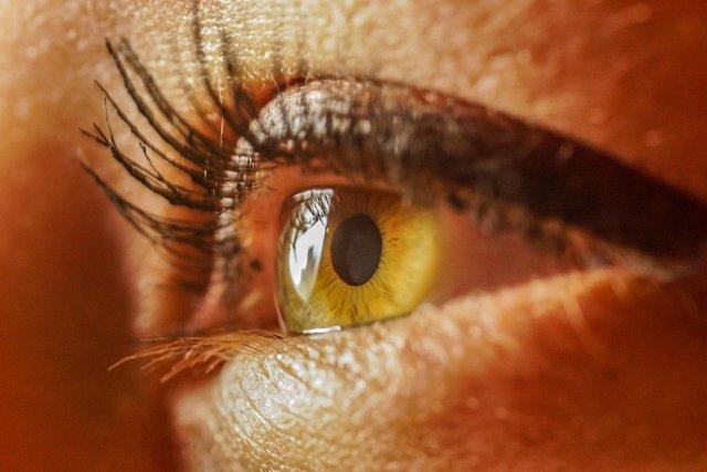 Una foto de los ojos proporciona un pronóstico de longevidad en pacientes con in