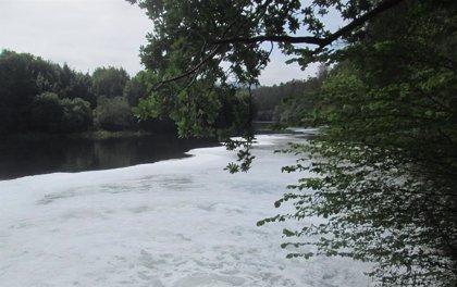 """Ecologistas acusan al Principado de hacer """"trampas"""" para permitir vertidos lácteas a la ría de Navia"""