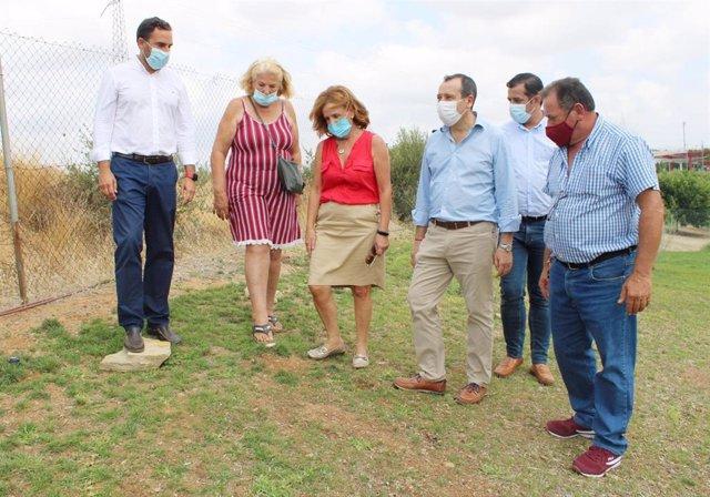 José Luis Ruiz Espejo, Daniel Pérez y Carmela Fernández informan sobre la pantalla vegetal del Parque Lineal de Campanillas