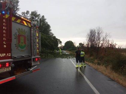 El Ayuntamiento de Talavera pone en marcha un dispositivo especial debido al temporal