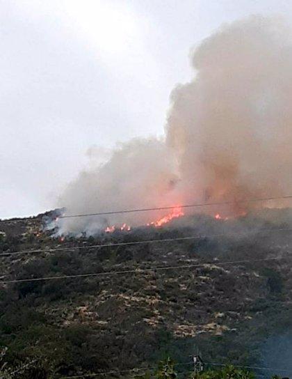 Medios del Plan Infoex y de las BRIF trabajan en la extinción de un incendio forestal en Marchagaz (Cáceres)