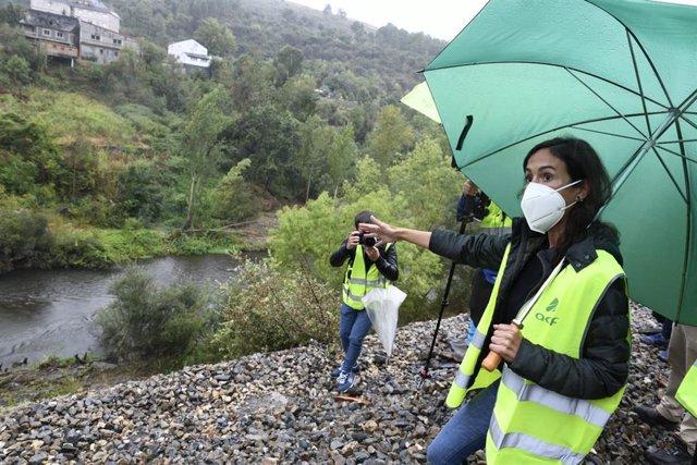 La presidenta de Adif, Isabel Pardo de Vera, visita la zona en la que unos vagones de mercancías cayeron al Sil, una vez retiradas las estructuras