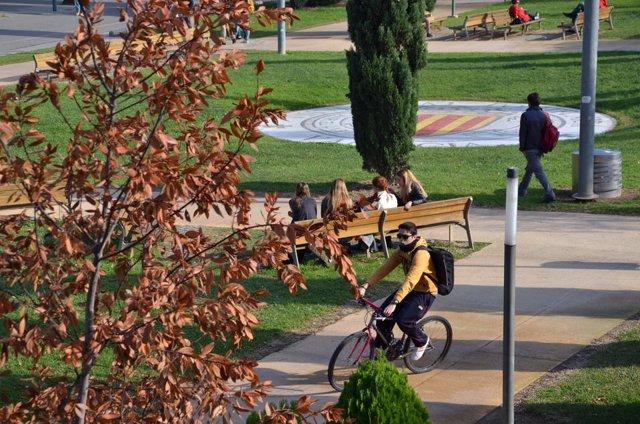 Jóvenes en un campus de València