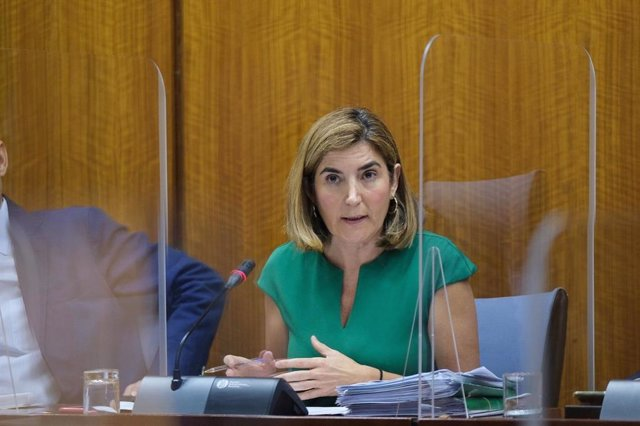 La consejera de Empleo, Formación y Trabajo Autónomo, Rocío Blanco, en una foto de archivo en comisión parlamentaria.