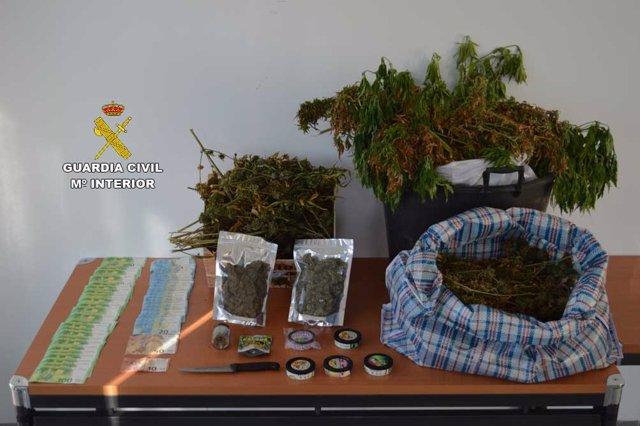 Dinero en efectivo y plantas de marihuana intervenidas en la operación.