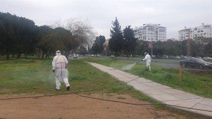 Clausuradas las escuelas de verano en dos colegios de Sevilla tras sendos positivos por Covid