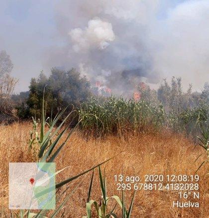 Continúan los trabajos en el incendio de Gibraleón (Huelva) con cuatro medios aéreos
