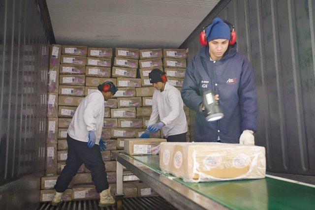 Fábrica de carne de pollo en Brasil