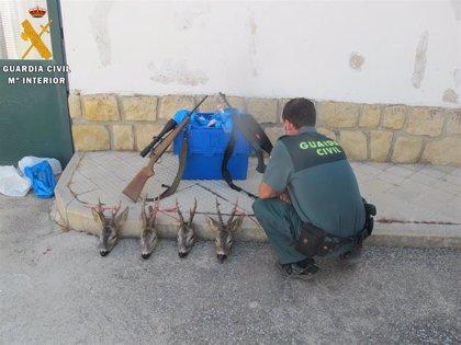 Denuncian a cuatro furtivos en Segovia que portaban en el coche cuatro cabezas de corzos y varios despiezados