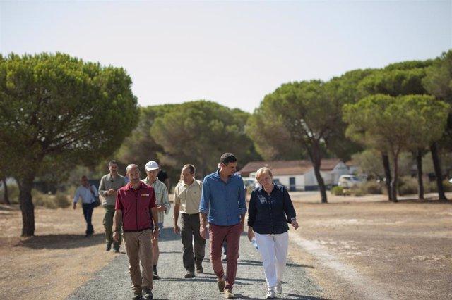 Pedro Sánchez y Angela Merkel en una anterior visita a Doñana