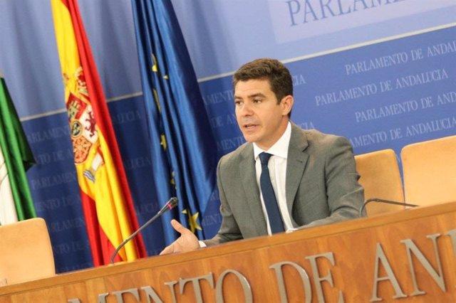 El portavoz de Ciudadanos en el Parlamento andaluz, Sergio Romero, en una foto de archivo.