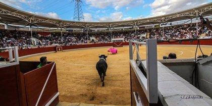 El certamen de novilladas 'Alfarero de Oro' de Villaseca anuncia su suspensión por la situación sanitaria