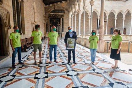 """Torra defiende la paralización """"inmediata"""" del ramal de la MAT en Riudarenes (Girona)"""