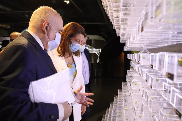 La Junta respalda la modernización de explotaciones e industrias olivareras con 75 millones en ayudas