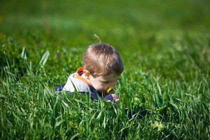 Estos son los beneficios de que un niño pase tiempo en la naturaleza