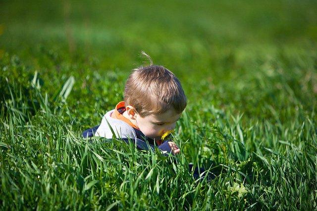 Un estudio apunta que los niños son más felices y sanos cuando pasan tiempo en l