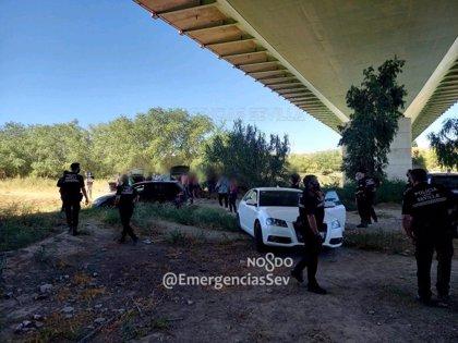 Policía Local de Sevilla disuelve una concentración de 40 personas, que deja un positivo en prueba de alcoholemia-drogas