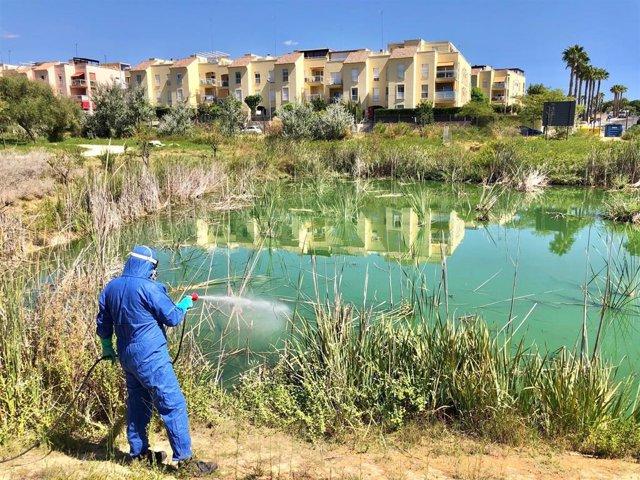 Labores de fumigación en parque Olivar del Zaudín para prevenir el virus del Nilo