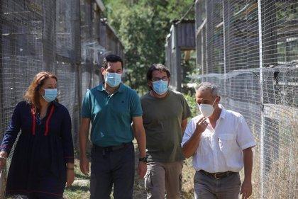 Moreno anuncia que el Centro de Cría del Quebrantahuesos de Cazorla será visitable