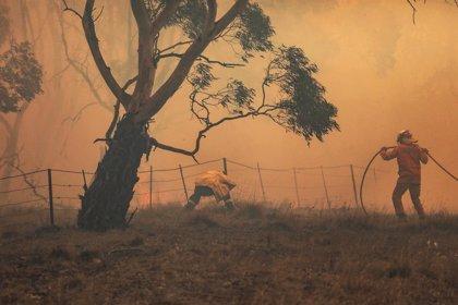 Australia.- Australia lucha con su primer gran incendio de la temporada con un fuego descontrolado en Nueva Gales
