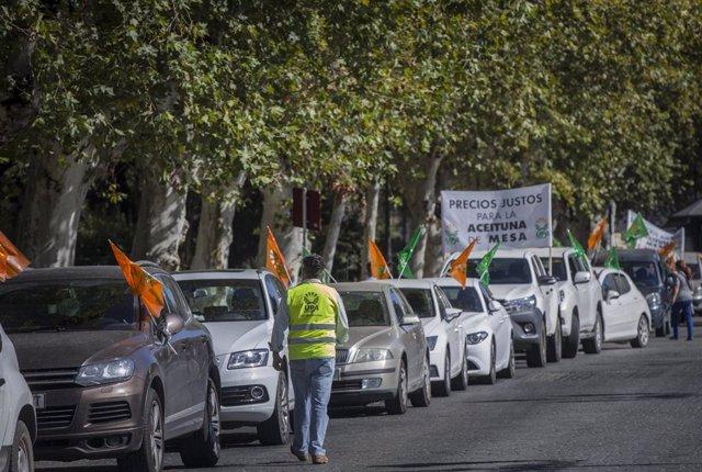 Manifestación UPA Andalucía de los agricultores ante los bajos precios de la aceituna de mesa ante el Palacio de San Telmo. En Sevilla, (Andalucía, España), a 21 de agosto de 2020.