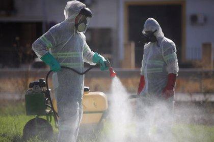 Fallece una anciana de 85 años ingresada en UCI por el virus del Nilo, segunda víctima mortal en este brote