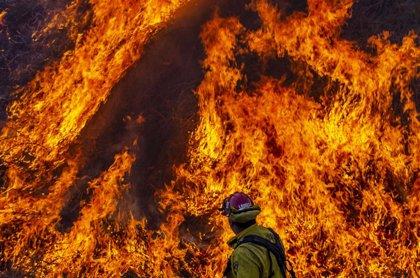 EEUU.- El incendio del norte de California es ya el segundo más grande de la historia tras devastar 400.000 hectáreas
