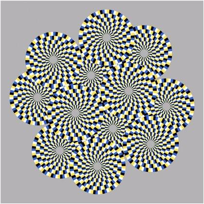 ¿Cómo nos engañan las ilusiones ópticas? Las moscas tienen la respuesta