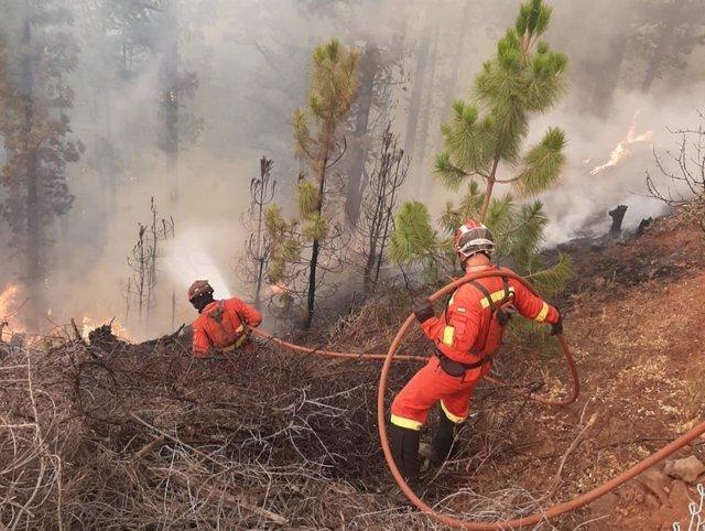 Efectivos de extinción de incendios en los trabajos para acabar con el fuego del incendio forestal de Garafía