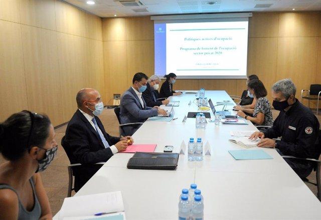 Un momento de la segunda reunión que ha celebrado este jueves el Consejo Económico y Social de Andorra