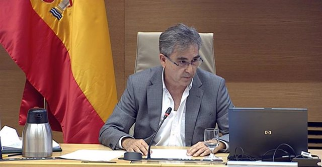 El presidente del Sindicato de Enfermería (Satse), Manuel Cascos, en su comparecencia en el Grupo de Trabajo de Sanidad y Salud Pública de la Comisión para la Reconstrucción Social y Económica del Congreso de los Diputados
