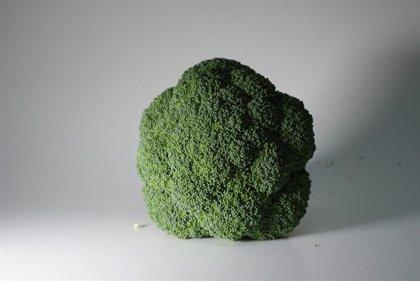 Consumir brócoli neutraliza los radicales libres de radiación UV y mantiene más tiempo el bronceado, según un estudio