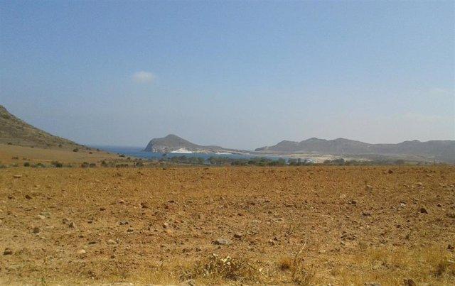 Paraje de Los Genoveses en el Parque Natural de Cabo de Gata-Níjar (Almería)