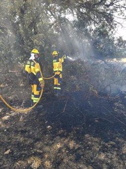 Efectivos del Ibanat actuando en el fuego de Es Pujolet.