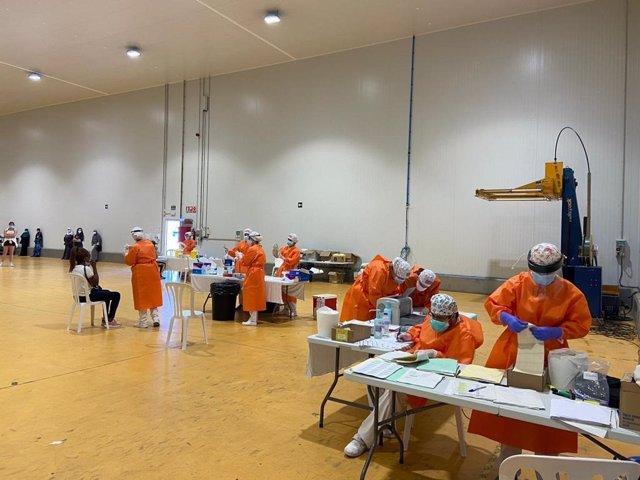 Las pruebas PCR realizadas hoy en la empresa hortofrutícola del Bajo Cinca.