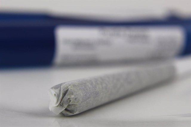 El cannabis y los opioides a menudo se recetan para tratar el dolor crónico