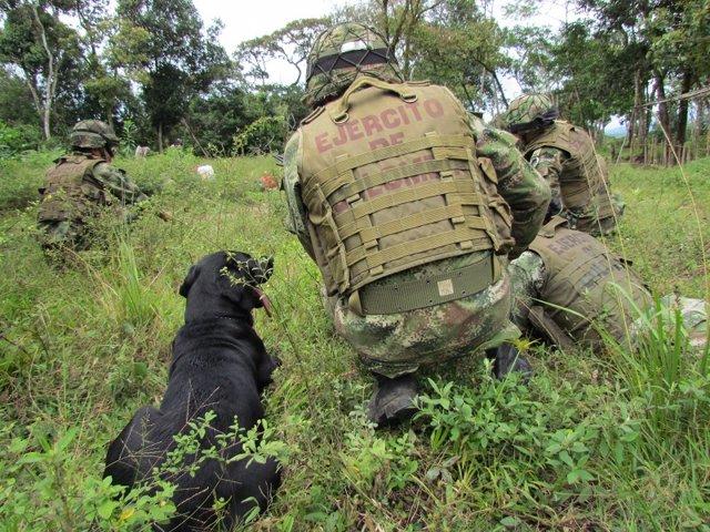 Colombia.- Al menos cuatro militares muertos al ser atacados cuando erradicaban