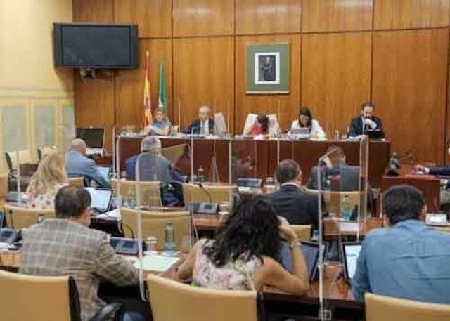 Imagen de este jueves de la Comisión de Economía del Parlamento de Andalucía.