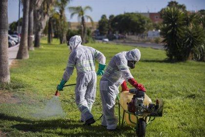 Salud destaca que desde el 22 de agosto no se detecta ningún enfermo nuevo de virus del Nilo con síntomas en Andalucía