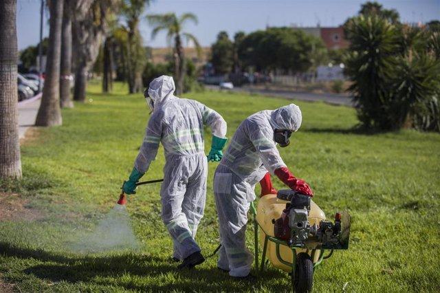 Un trabajador durante las labores de fumigación contra los mosquitos causantes del virus del Nilo en Coria del Río, (Sevilla, Andalucía, España), a  17 de agosto de 2020.