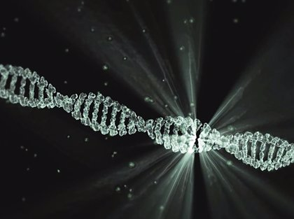 CSIC descifra la estructura de la proteína clave que repara daños del ADN por radiaciones ultravioleta o quimioterapia