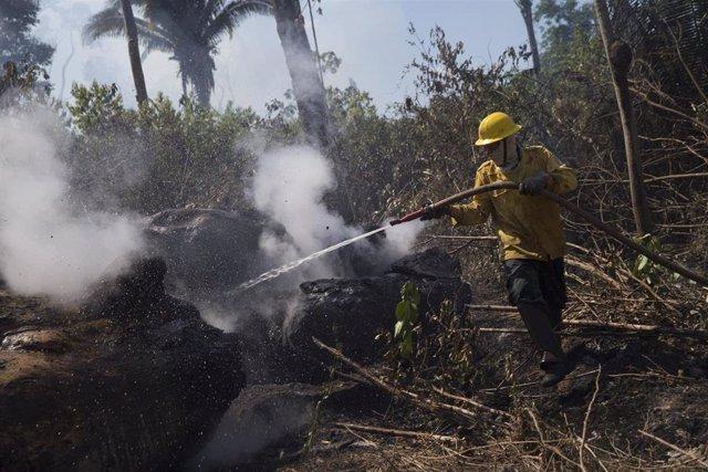 Imagen de archivo de un bombero extinguiendo un fuego en el Amazonas.