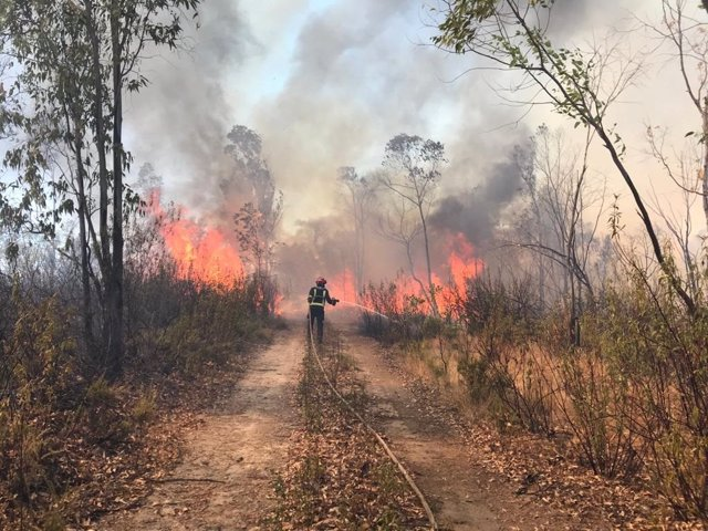 Uno de los efectivos del Consorcio Provincial de Bomberos de Huelva actúan en el incendio forestal declarado en Almonaster la Real (Huelva).