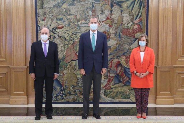El Rey recibe al director de la Organización contra las Armas Químicas, que se h