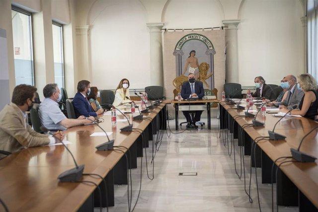 Creada la comisión de expertos que hará seguimiento a tiempo real de la incidencia del Covid-19 en las aulas granadinas