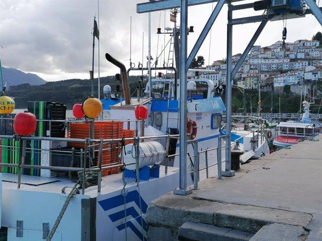 Agro.- Más de 700 pescadores de Girona se comprometen a recoger residuos en el m