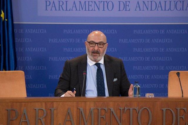 El portavoz parlamentario de Vox, Alejandro Hernández