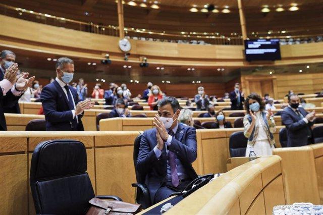 El presidente del Gobierno, Pedro Sánchez, comparece ante el Pleno del Senado