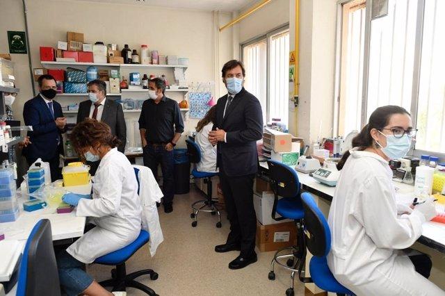El consejero de Empleo, Investigación y Universidades, Miguel Motas, visita a los investigadores de la Universidad de Murcia que trabajan en dos proyectos sobre la Covid-19, financiados por la Fundación Séneca.