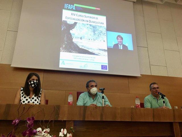 Córdoba.- La Junta destaca la excelencia del curso en Olivicultura del Ifapa